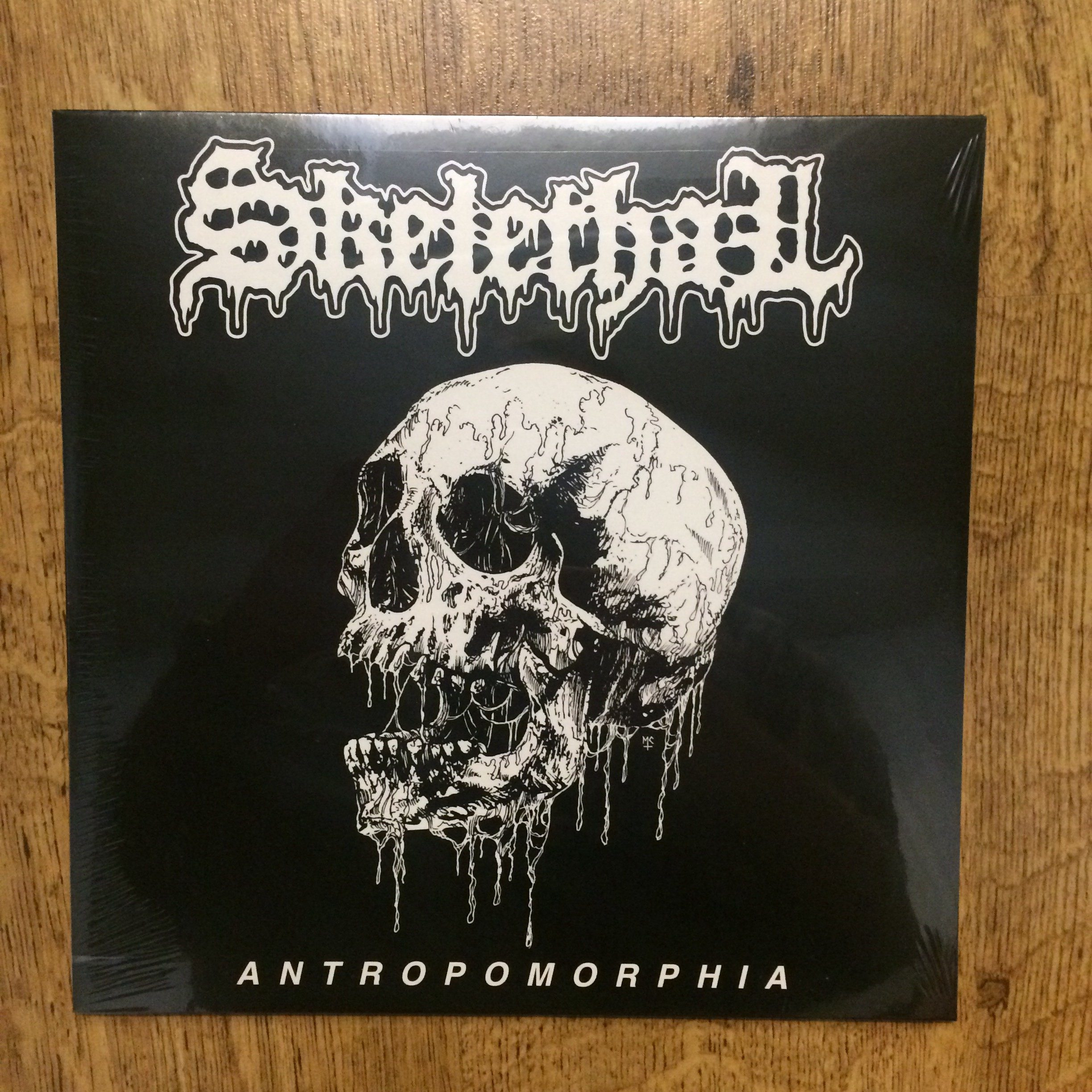 Photo of the Skelethal -
